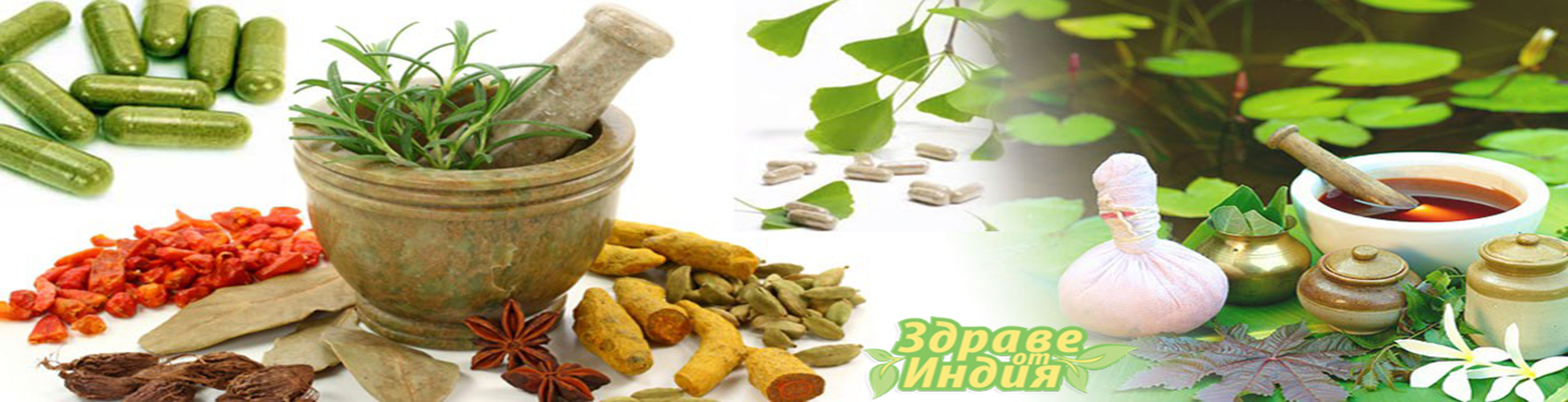 Здраве от Индия Пловдив- Онлайн магазин за хранителни добавки и здравословна храна